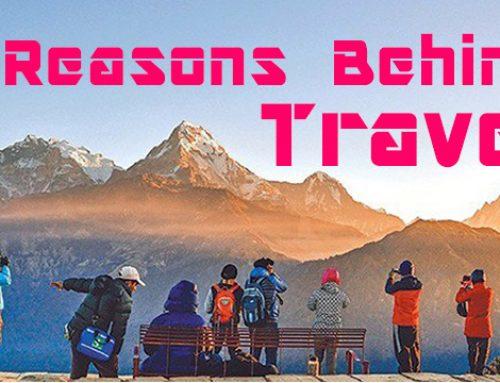 Reason Behind Travel ?